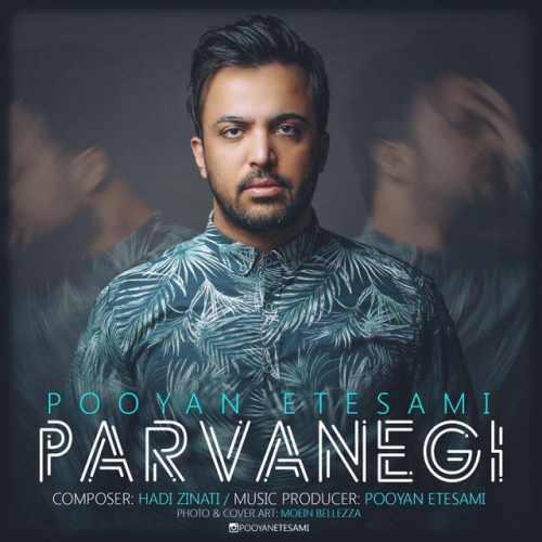 دانلود آهنگ جدید پویان اعتصامی بنام پروانگی