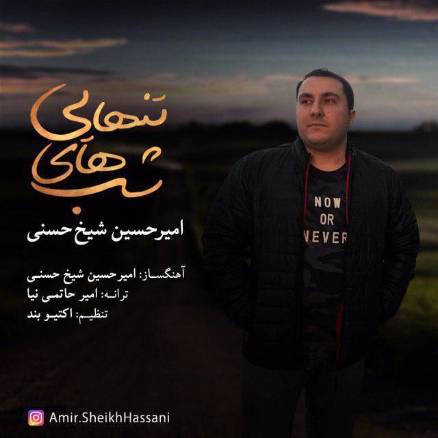 دانلود آهنگ جدید امیرحسین شیخ حسنی بنام شب های تنهایی