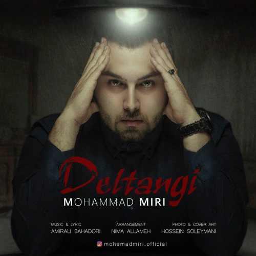دانلود آهنگ جدید محمد میری بنام دلتنگی