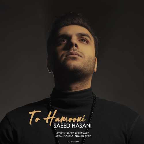 دانلود آهنگ جدید سعید حسنی بنام تو همونی