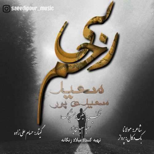 دانلود آهنگ جدید سعید سعیدی پور بنام بی رحم