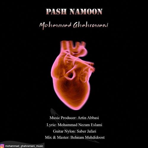 دانلود آهنگ جدید محمد قهرمانی بنام پاش نمون