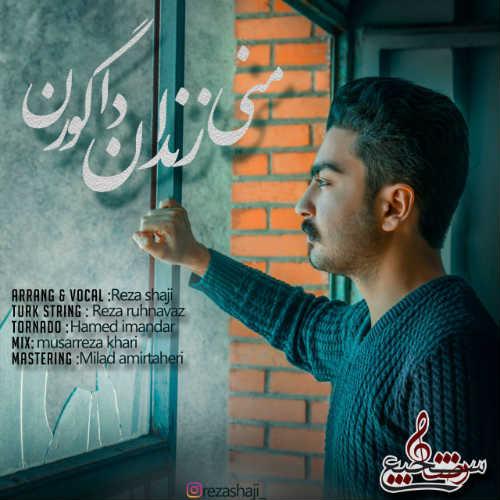 دانلود آهنگ جدید رضا شاجی بنام منی زندان دا گورن