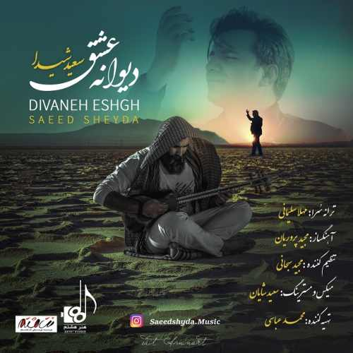 دانلود موزیک ویدیو جدید سعید شیدا بنام دیوانه ی عشق