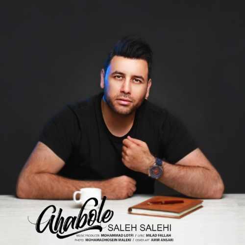 دانلود آهنگ جدید صالح صالحی بنام قبوله