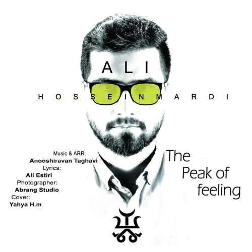 دانلود آهنگ جدید علی حسینمردی بنام قله احساس