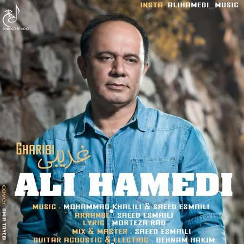 دانلود آهنگ جدید علی حامدی بنام غریبی