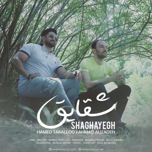 دانلود آهنگ جدید حامد تکلو و احمد علیزاده بنام شقایق