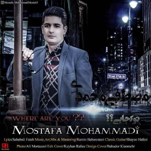 دانلود آهنگ جدید مصطفی محمدی بنام تو کجایی