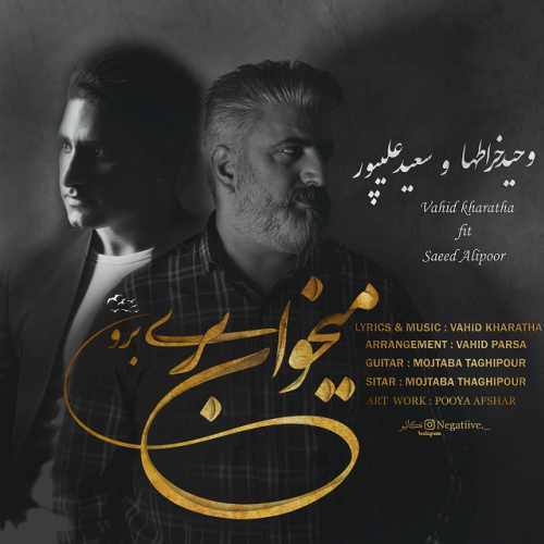 دانلود آهنگ جدید وحید خراطها و سعید علیپور بنام میخوای بری برو