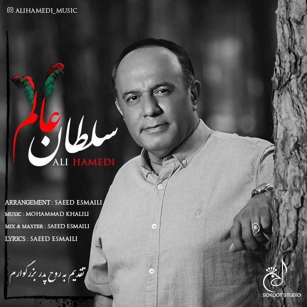 دانلود آهنگ جدید علی حامدی بنام سلطان عالم