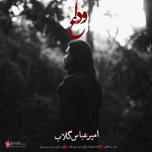 دانلود آهنگ جدید امیر عباس گلاب بنام وداع