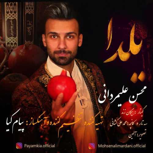 دانلود آهنگ جدید محسن علیمردانی بنام یلدا