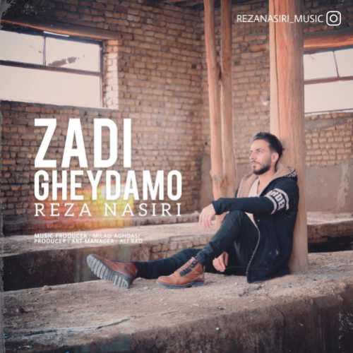 دانلود آهنگ جدید رضا نصیری بنام زدی قیدمو