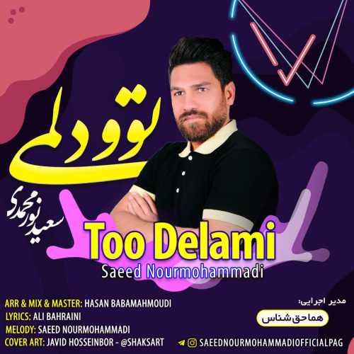 دانلود آهنگ جدید سعید نورمحمدی بنام توو دلمی
