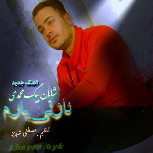 دانلود آهنگ جدید شایان بیگ محمدی بنام نازلی یارم
