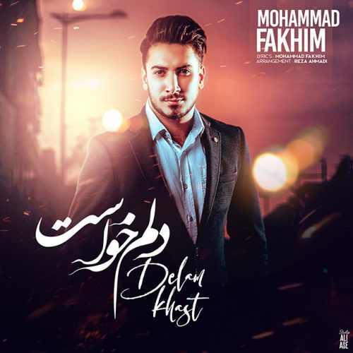 دانلود آهنگ جدید محمد فخیم بنام دلم خواست