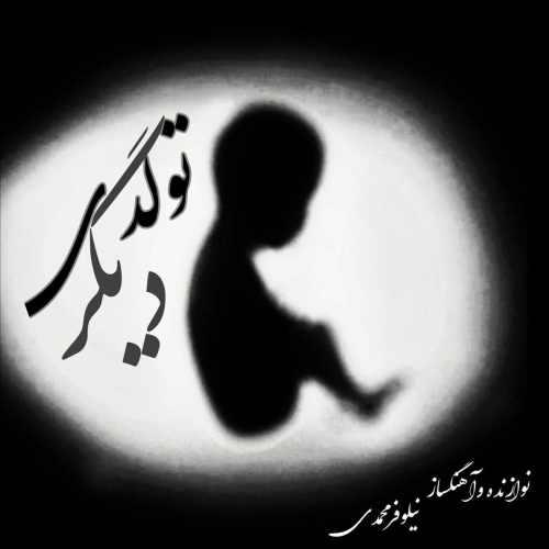 دانلود آهنگ جدید بی کلام نیلوفر محمدی بنام تولدی دیگر