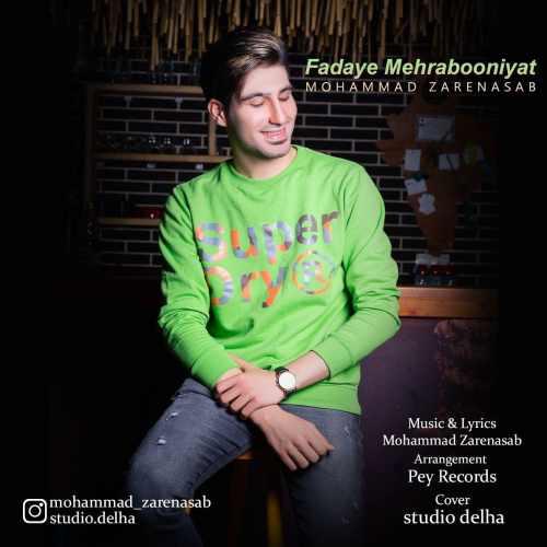 دانلود آهنگ جدید محمد زارع نسب بنام فدای مهربونی هات