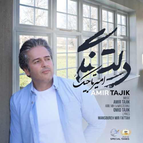 دانلود آهنگ جدید امیر تاجیک بنام دلتنگی