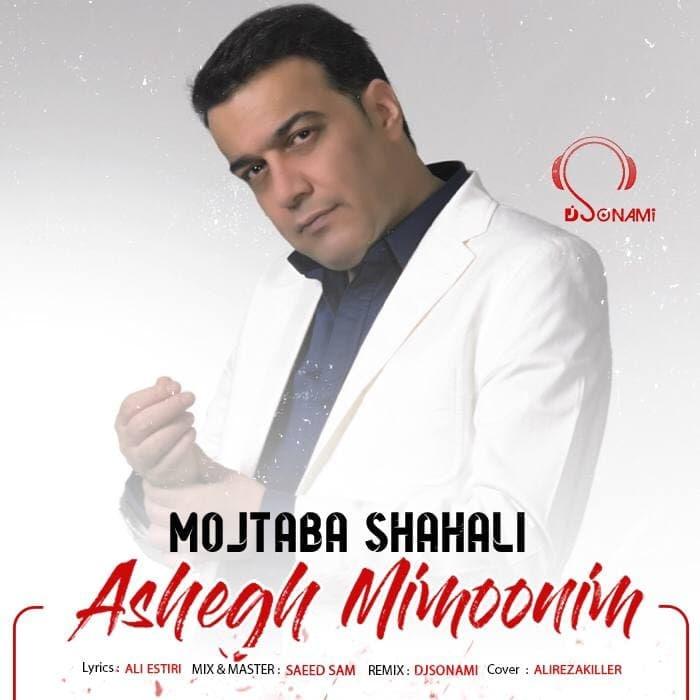 دانلود رمیکس جدید آهنگ عاشق میمونیم از مجتبی شاه علی