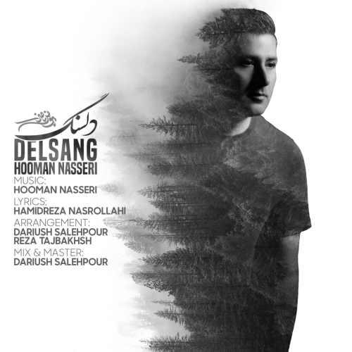 دانلود آهنگ جدید هومن ناصری بنام دلسنگ