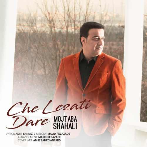دانلود آهنگ جدید مجتبی شاه علی بنام چه لذتی داره