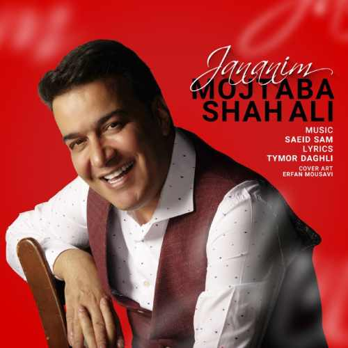 دانلود آهنگ جدید مجتبی شاه علی بنام جانانیم