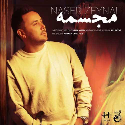 دانلود آهنگ جدید ناصر زینعلی بنام مجسمه