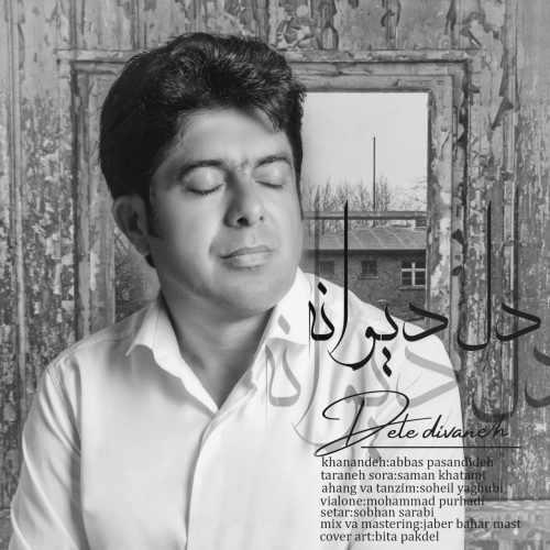 دانلود آهنگ جدید عباس پسندیده بنام دل دیوانه