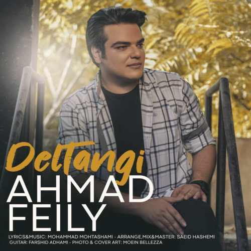 دانلود آهنگ جدید احمد فیلی بنام دلتنگی