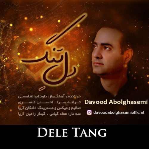 دانلود آهنگ جدید داوود ابوالقاسمی بنام دل تنگ