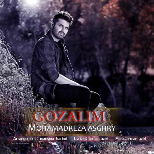 دانلود آهنگ جدید محمدرضا اصغری بنام گوزلیم