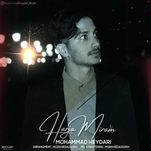 دانلود آهنگ جدید محمد حیدری بنام هرجا میرم