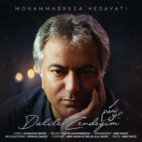 دانلود آهنگ جدید محمدرضا هدایتی بنام دلیل زندگیم