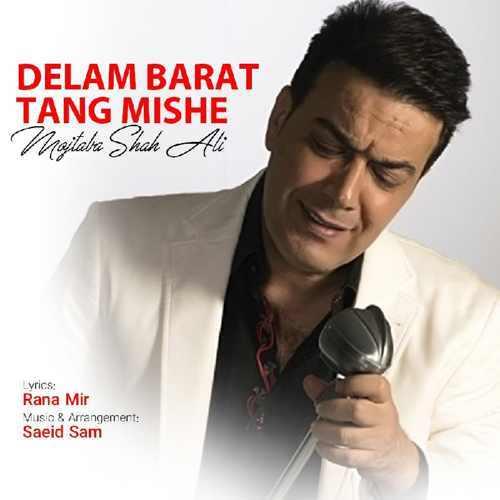 دانلود آهنگ جدید مجتبی شاه علی بنام دلم برات تنگ شده