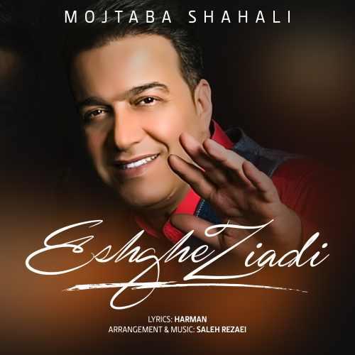 دانلود آهنگ جدید مجتبی شاه علی بنام عشق زیادی
