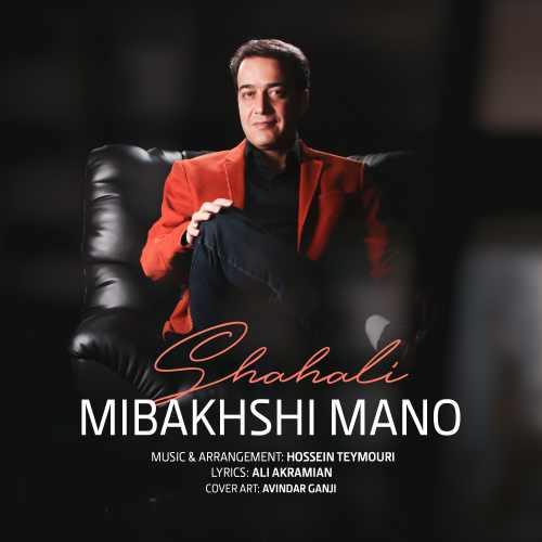 دانلود آهنگ جدید مجتبی شاه علی بنام میبخشی منو