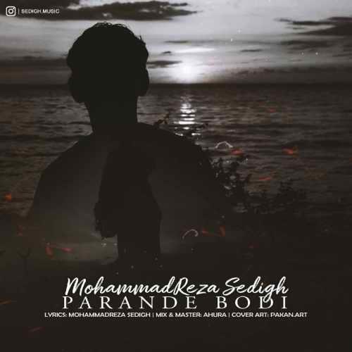 دانلود آهنگ جدید محمدرضا صدیق بنام پرنده بودی