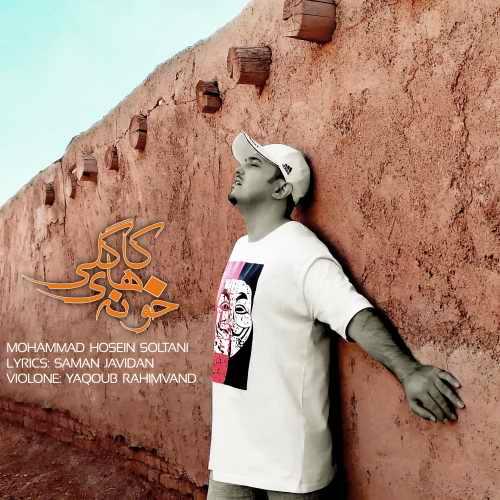 دانلود موزیک ویدیو جدید محمدحسین سلطانی بنام خونه های کاگلی