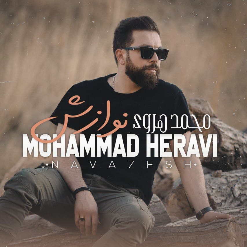 دانلود آهنگ جدید محمد هروی بنام نوازش