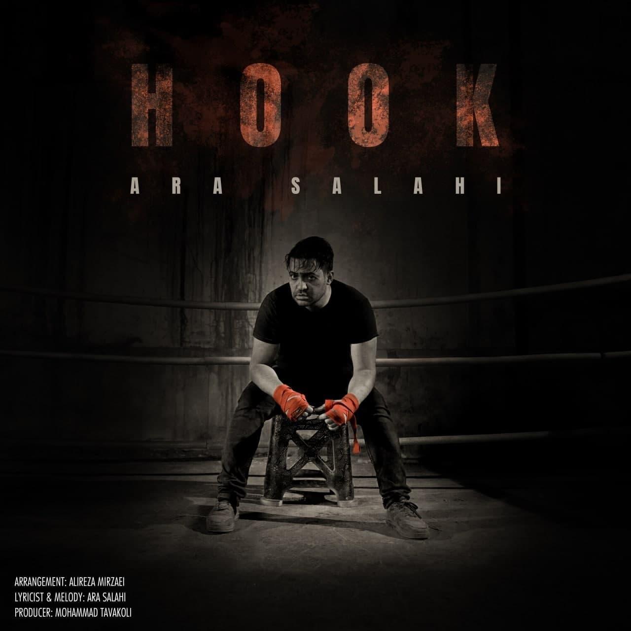 دانلود آهنگ جدید آرا صلاحی بنام هوک