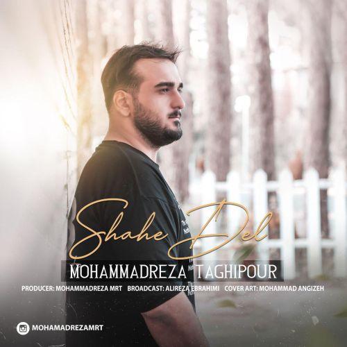 دانلود آهنگ جدید محمد رضا تقی پور بنام شاهه دل