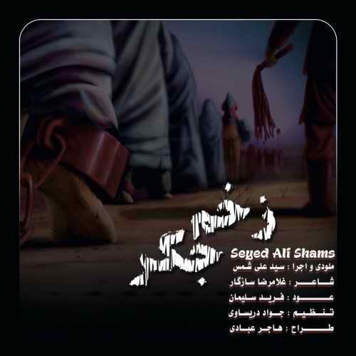 دانلود آهنگ جدید سید علی شمس بنام زخم جگر